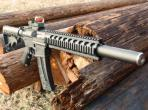 Smith & Wesson M&P 15-22 Integrally Suppressed