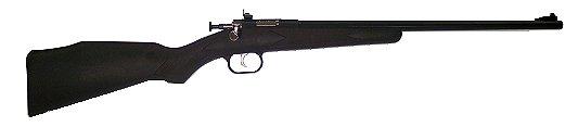 "Crickett Bolt 22 Long Rifle 16.12"" Synthetic Blue"